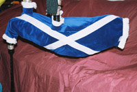 Bagpipes by bagpipecovers.com